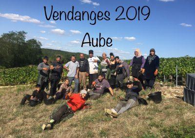 Vendanges 2019 Aube