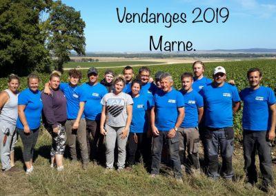 Vendanges 2019 Marne